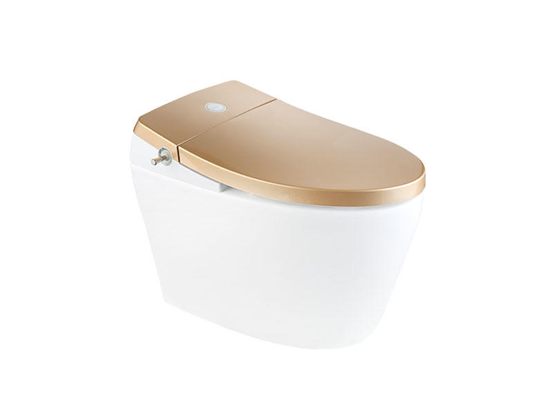 New Smart Toilet With Golden Cover Zn-074