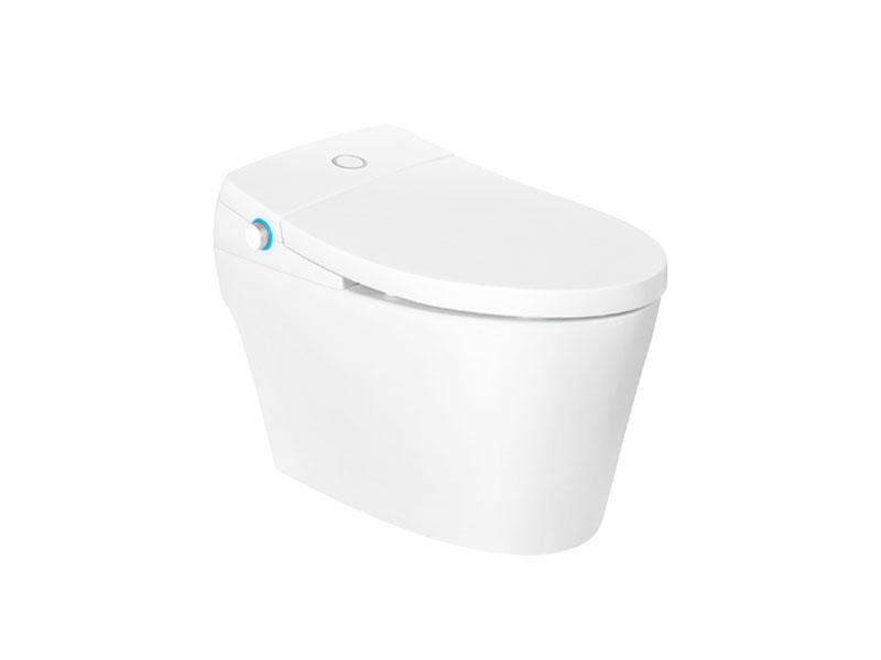 Exquisite Smart Toilet Seat With Comfort Height Zn-075