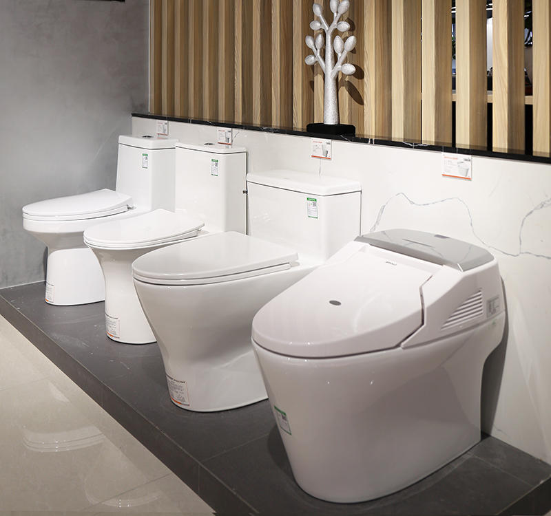 Appollo General Bathroom toilet Technology Display