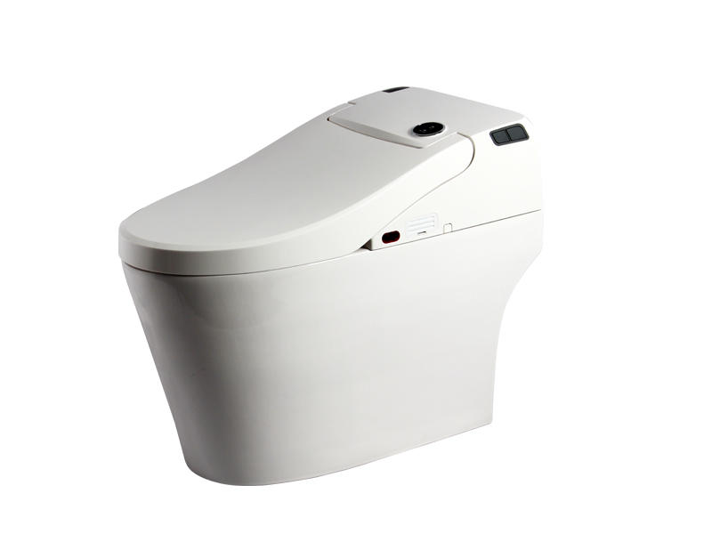Smart Toilet Seat Bathroom Sanitary Electric Toilet Seat Cover Zn-077