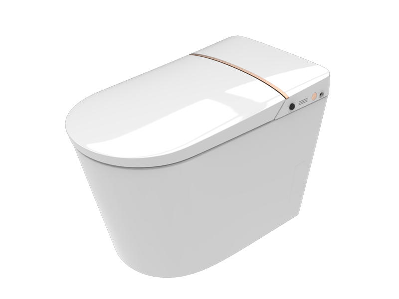 Space And Water Saving Toilet ZN-080