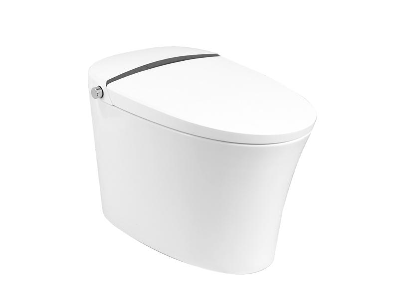 Washroom Commode With Comfort Height ZN-079