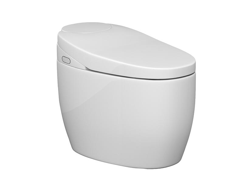 Modern bathroom toilet with samrt toilet seat ZN-062