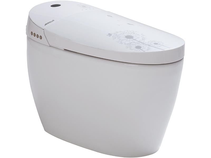 Contemporary elegant smart toilet,toilet suppliers ZN-064