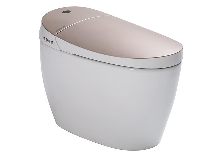 Luxury intelligent toilet,standard comfortable toilet ZN-064MC
