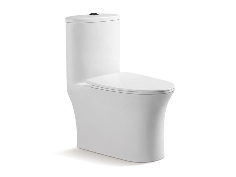 Modern restroom commode,dual flush toilet ZB-3905